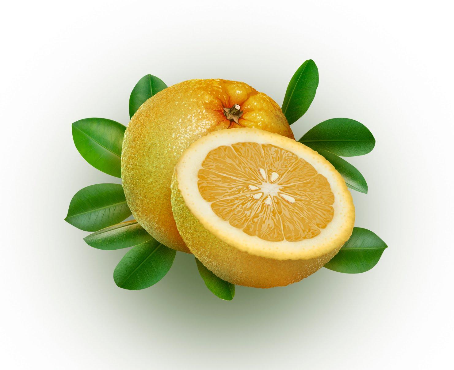 naranja agria